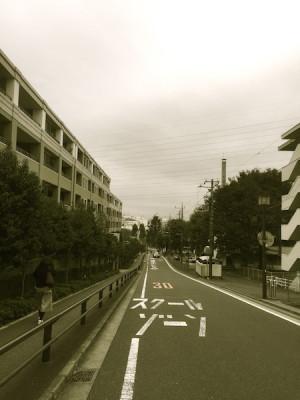 sakurai1_1
